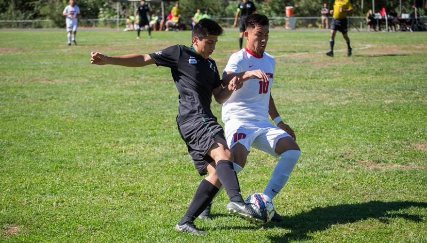 Photo for Pioneers Fall in Close Road Match